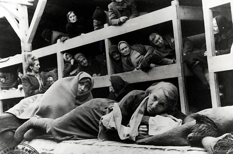atrocity essay genocide history holocaust mass memory Holocaust essays: hitler's henchmen: willing followers in genocide the holocaust history - a people's and survivors' history.